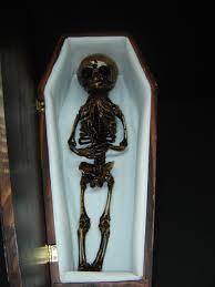 halloween props life size skeletons