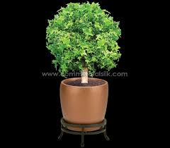 193 best artificial boxwood balls single topiary