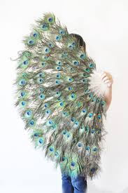 peacock fan 18 best burlesque images on burlesque costumes