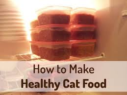 how to make homemade cat food homemade cat food cat food and