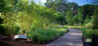 how to plan a landscape design outdoor landscaping planning haammss