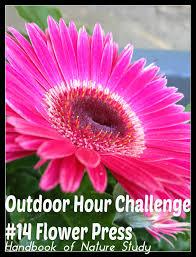 outdoor hour challenge 14 pressing flowers