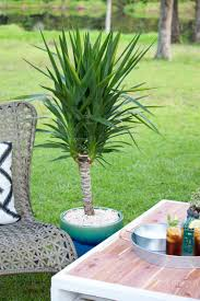 diy pallet coffee table gets an outdoor makeover southern revivals
