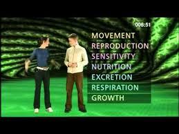 7 characteristics of life mrs gren mrs nerg bbc curriculum