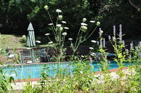 native plants nj new nj bill encourages homeowners to grow u0027weeds u0027 to help wildlife