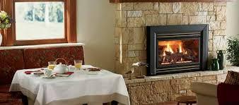Regency Gas Fireplace Inserts by Gas Inserts Regency Hampton Anderson U0027s Chimney U0026 Masonry