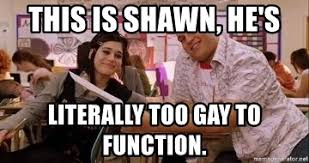 Too Gay Meme - this is shawn he s literally too gay to function too gay to