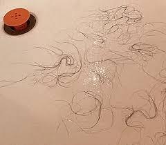 Bathtub Hair Catcher Tubshroom Bathtub Hair Catcher
