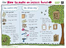 bees hive solitary bees need places to nest here u0027s how to make