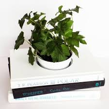 Black And White Planters by 109 Best Book Planters Bookends And More Images On Pinterest