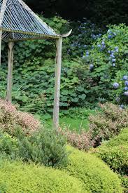 photos de pergola the 25 best pergola dans le jardin ideas on pinterest terrasse