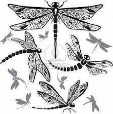 71 best art dragonfly libélula ๑๑๑ images on pinterest bird