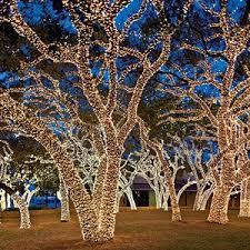 johnson city christmas lights the twinkliest drive in texas texas johnson city and christmas lights