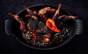 quail precision nutrition