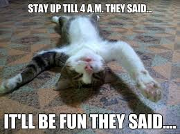 Tired Cat Meme - tired cat memes quickmeme