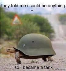 Tank Meme - turtle tank meme slapcaption com meme s pinterest meme