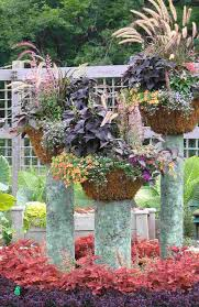 garden containers pinterest home outdoor decoration