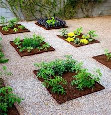 gorgeous backyard vegetable garden ideas vegetable garden design