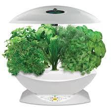100 best indoor herb garden best 25 growing gardens ideas
