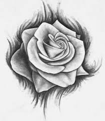 sketching of rose 1000 images about roses on pinterest rose