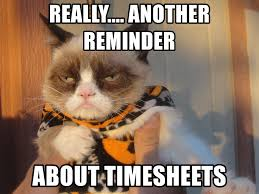 Grumpy Cat Meme Generator - really another reminder about timesheets halloween grumpycat