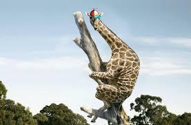 psbattle a giraffe up in a tree 1920 x 1200 rebrn com
