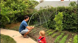 how to build a trellis archway easy and simple cucumber trellis for vertical growing by the