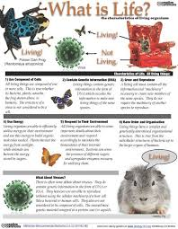 Characteristics Of Living Things Worksheet Middle Posted A Free Study Guide For Teachers To With Their