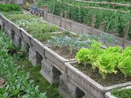 small backyard vegetable garden design ideas best garden reference