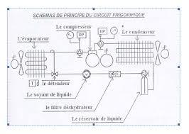 schema chambre froide negative circuit frigorifique froid industriel