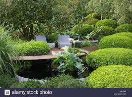 English Box Topiary - box topiary home design inspirations