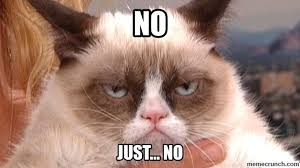 How About No Meme - meme how about no 28 images grumpy cat no grumpy cat know your
