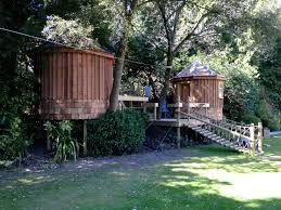 looks fun el circular live in treehouses with sleeping lofts