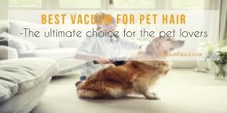Best Pet Vaccum Best Vacuum For Pet Hair Ultimate Choice For Pet Lovers