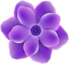 purple flower purple flower png clip image gallery yopriceville high