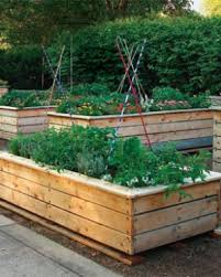stylish raised beds finegardening