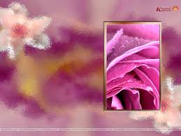 color wallpapers download group 85