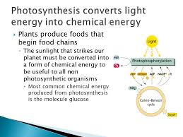 Is Light Energy Topic 3 8 Photosynthesis Ppt Download