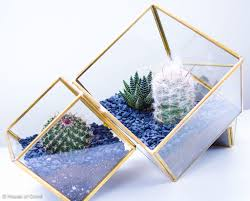 how to make a cactus terrarium or succulents terrarium diy