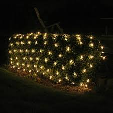 bush lights decor