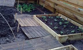 mulching my shetland garden