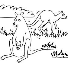 dessin kangourou en ligne gratuit à imprimer