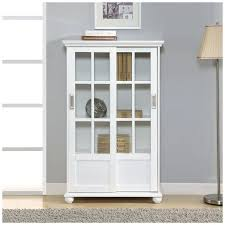 Ikea Bookcases With Glass Doors Bookcase With Glass Doors Ikea Faga Info
