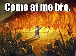 Anteater Meme - come at me bro