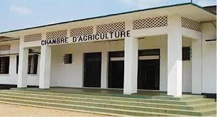 chambre d agriculture 10 cameroon info cameroun financement de l agriculture la
