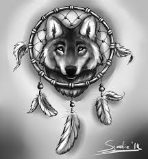 drawings of catchers and animals wolf and dreamcatcher by