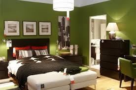 paint colors for bedrooms for adults ideas advice for your home