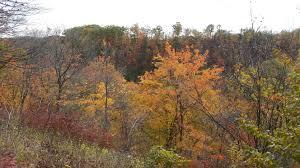 spirit halloween willow lawn camper u0027s halloween u2013 bronte creek u2013 sue and daves rv adventures
