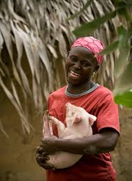 heifer international skip cyber monday and shop heifer international we did this a