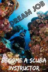 Indiana how to get paid to travel images Best 25 scuba diving jobs ideas scuba diving jpg